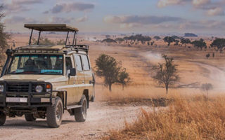 Choosing the best Uganda Tour Operator