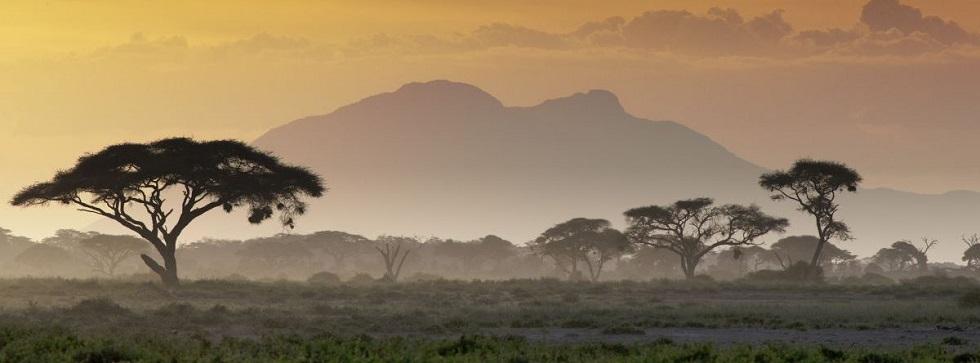 9 Days Rwanda Gorillas, Maasai Mara & Serengeti Tour