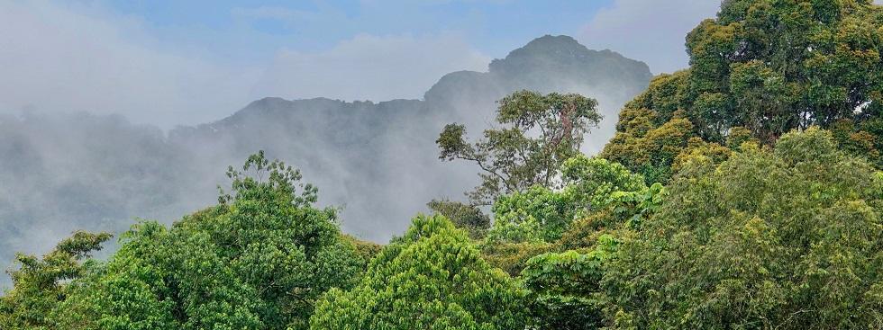 Full list of Rwanda National Parks