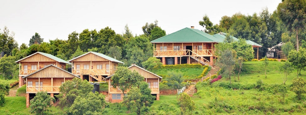 Ruhija Sector of Bwindi