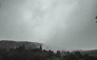 Gorilla Trekking in the Rain