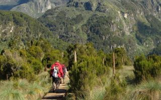 7 Days Murchison Falls & Mount Rwenzori Hike
