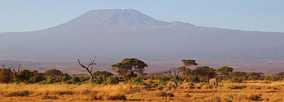 Gorilla Trekking & Kilimanjaro