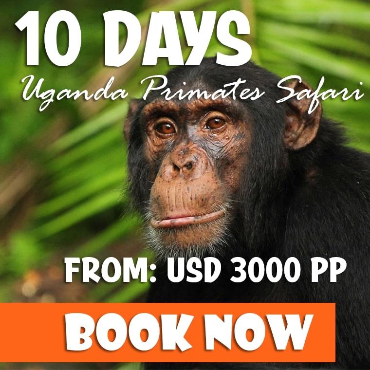 10 Days Uganda Holiday Offer