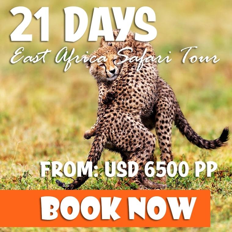 21 Days Uganda Rwanda Safari Offer