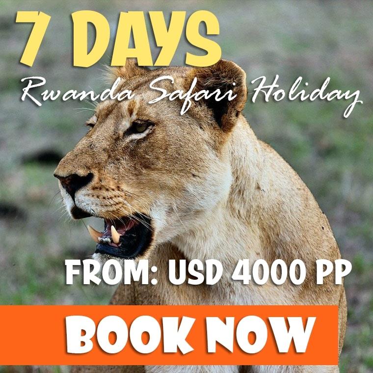 7 Days Rwanda Primates Safari Offer